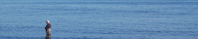 Fiskeri under overfladen